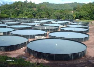 Tribunal ambiental rechaz reclamaci n que buscaba for Diferencia entre tanque y estanque